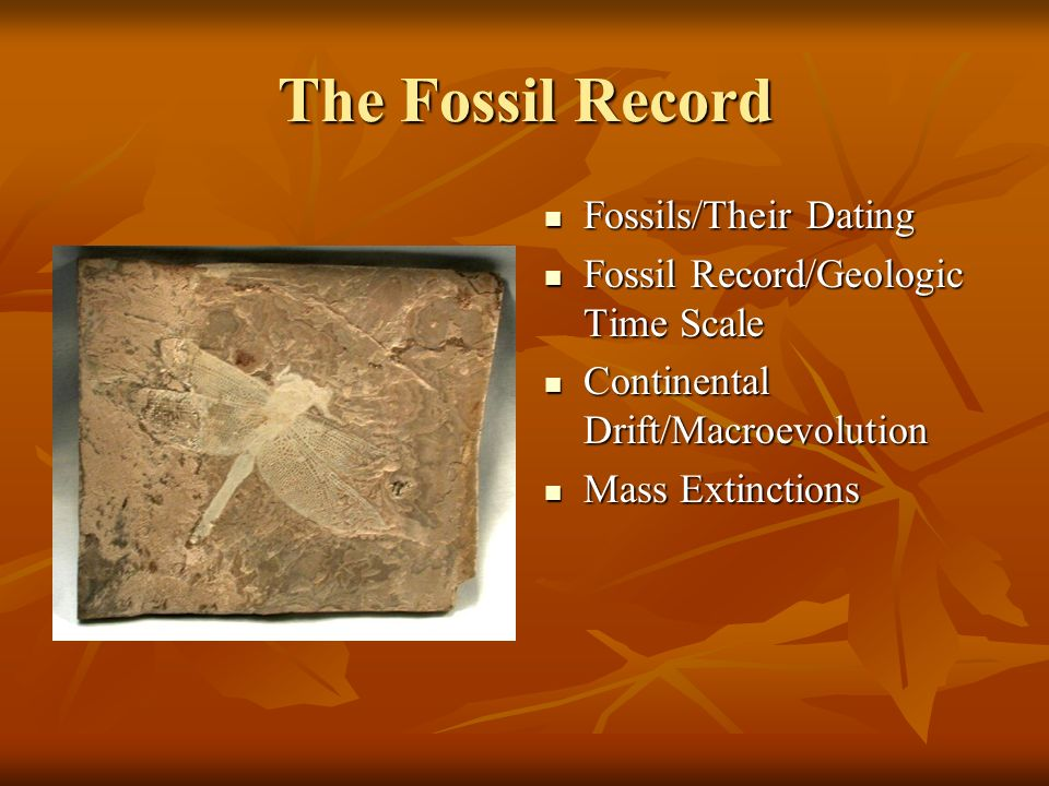fossil record dating assumptions Dating tips for divergence-time a capricious fossil record for calibration 'tip-dating' promises of the assumption of randomly distributed fossil.