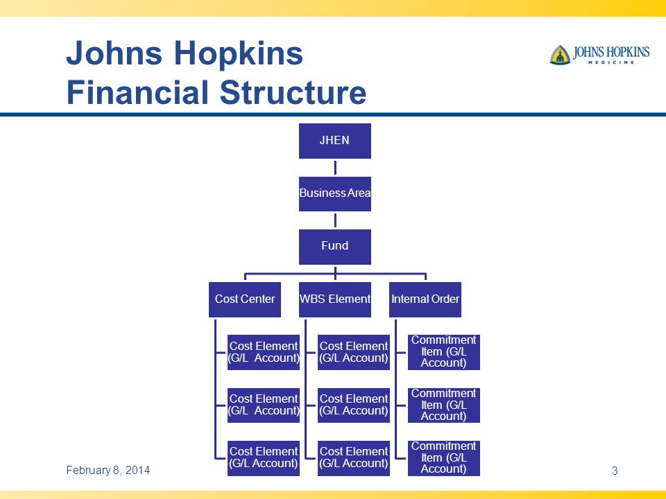 Johns Hopkins Financial Structure