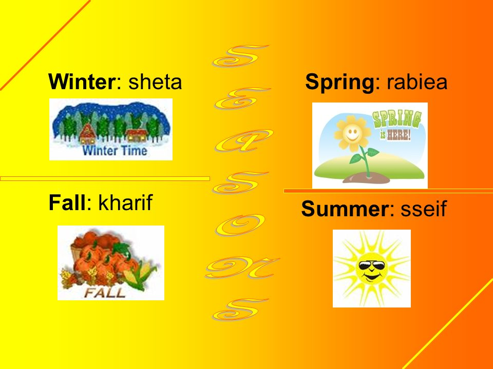 Winter: sheta Fall: kharif Spring: rabiea SEASONS Summer: sseif