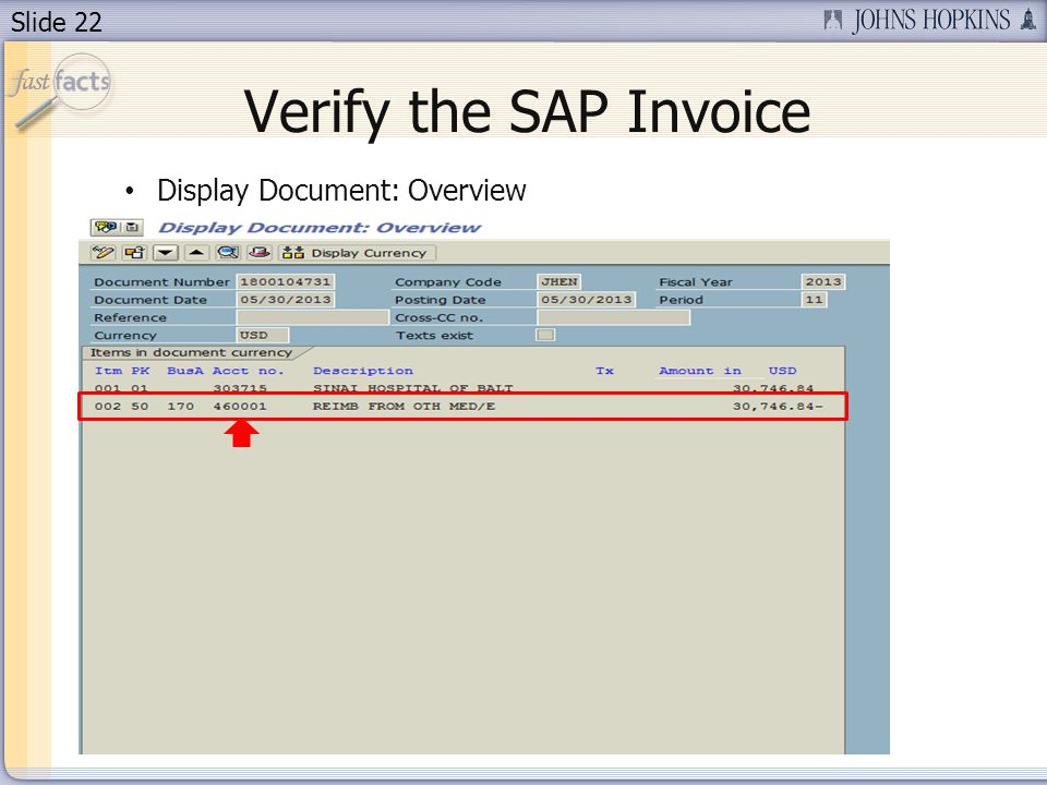 Verify the SAP Invoice Display Document: Overview