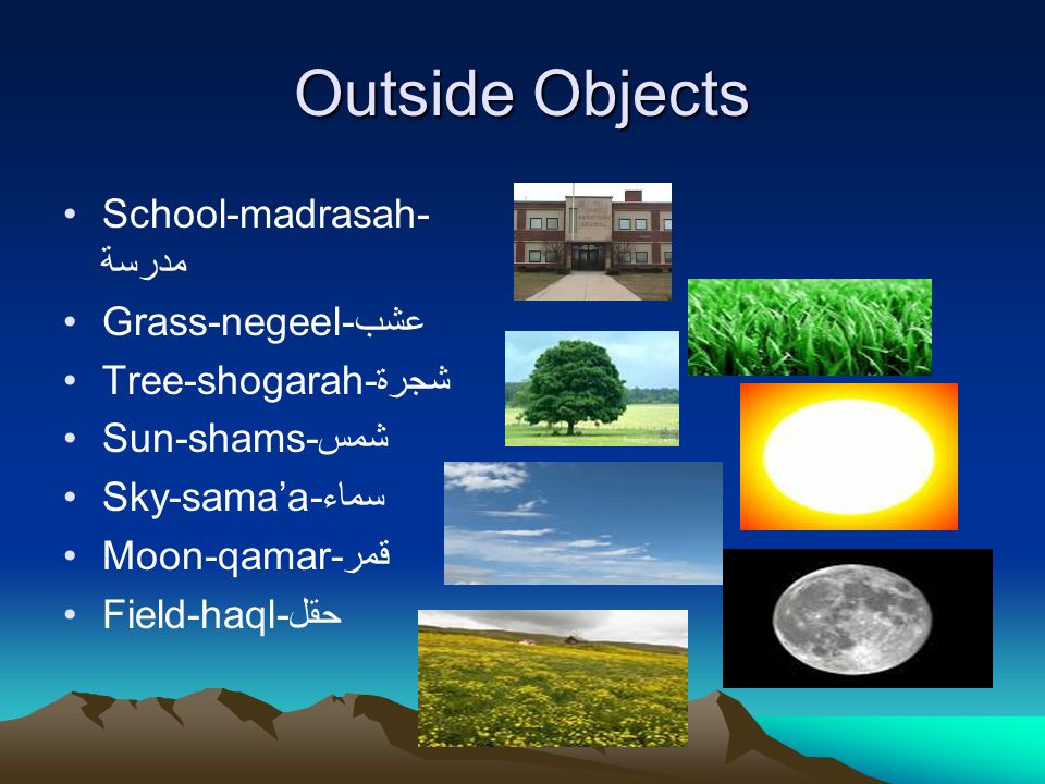 Outside Objects School-madrasah-مدرسة Grass-negeel-عشب