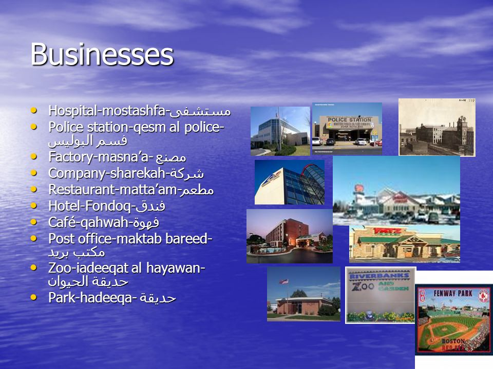 Businesses Hospital-mostashfa-مستشفى