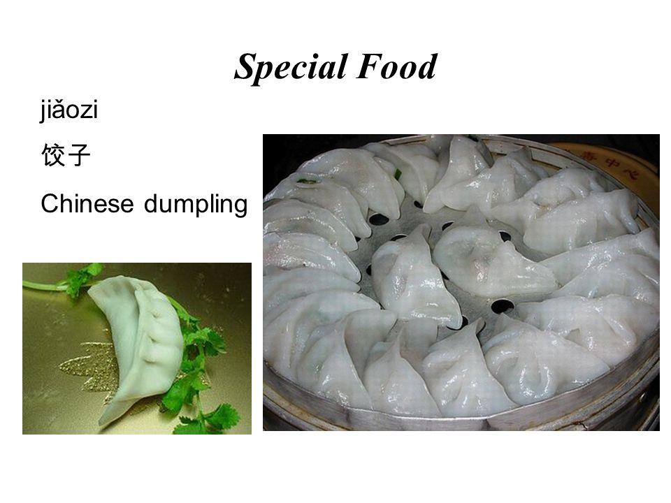 Special Food jiǎozi 饺子 Chinese dumpling