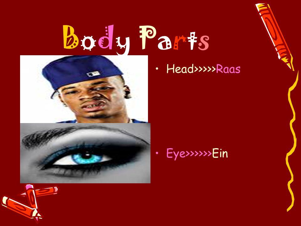 Body Parts Head>>>>>Raas Eye>>>>>>Ein