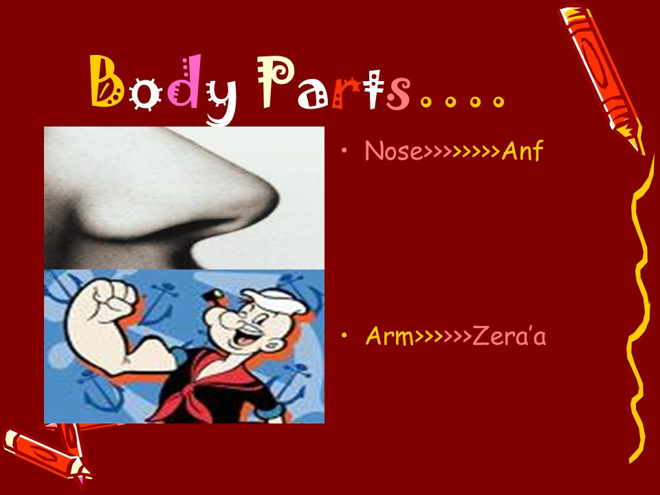 Body Parts…. Nose>>>>>>>>Anf