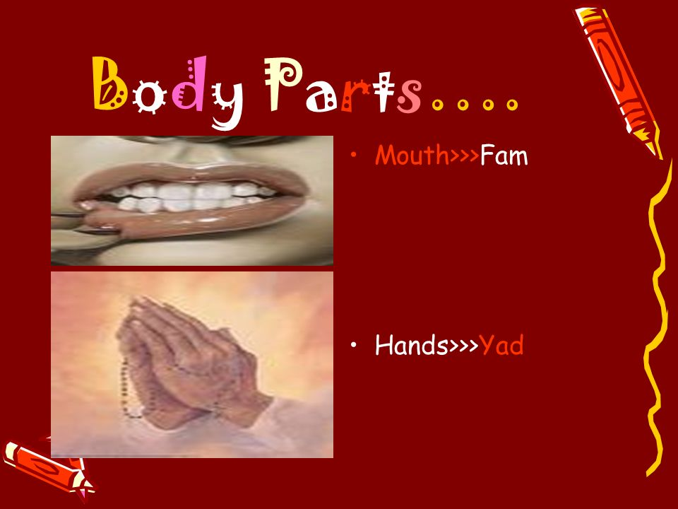 Body Parts…. Mouth>>>Fam Hands>>>Yad