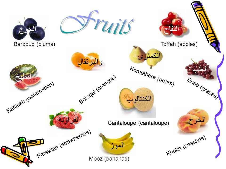 Fruits الخوخ التفاح الكمثرى والبرتقال العنب البطيخ الكنتالوب الفراولة