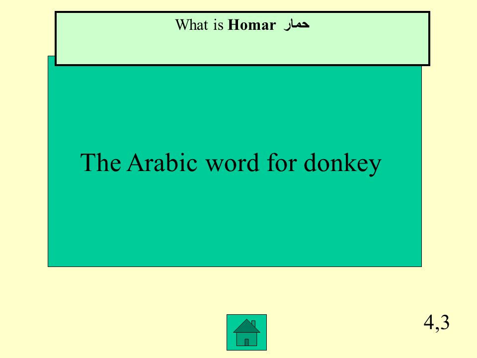 The Arabic word for donkey