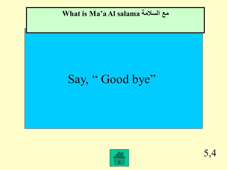 What is Ma'a Al salama مع السلامة