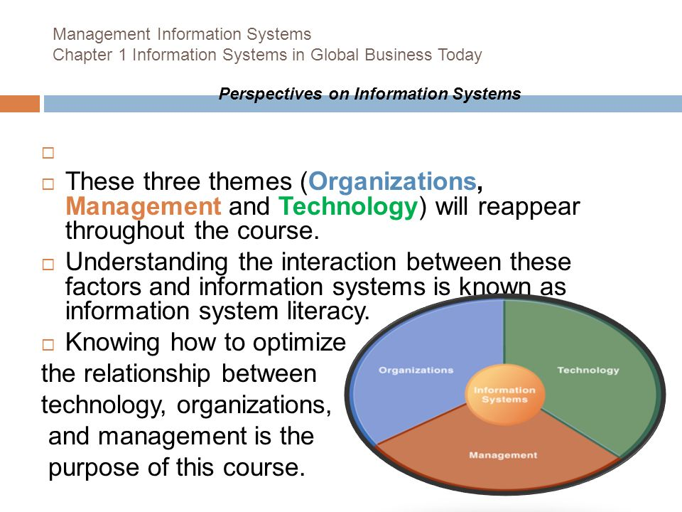 relationship between management information system and technology