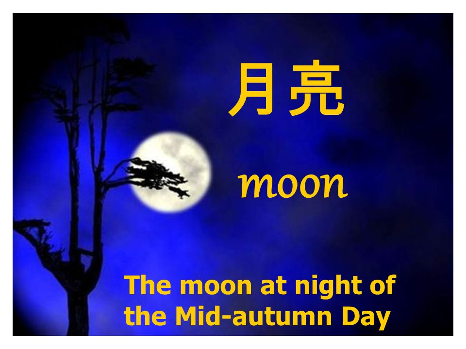 月亮 moon The moon at night of the Mid-autumn Day