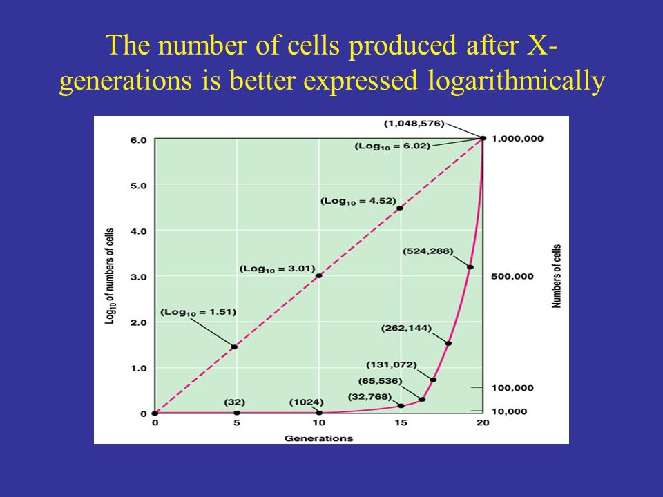 The number of cells produced after X-generations is better expressed logarithmically