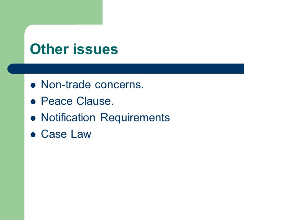 Other issues Non-trade concerns. Peace Clause.