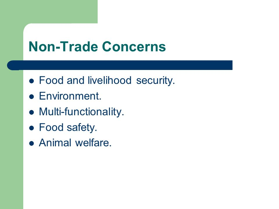 Non-Trade Concerns Food and livelihood security. Environment.