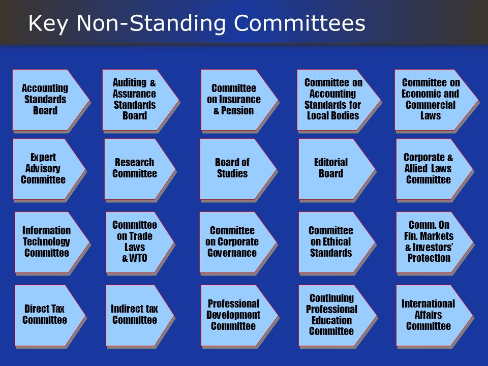 Key Non-Standing Committees