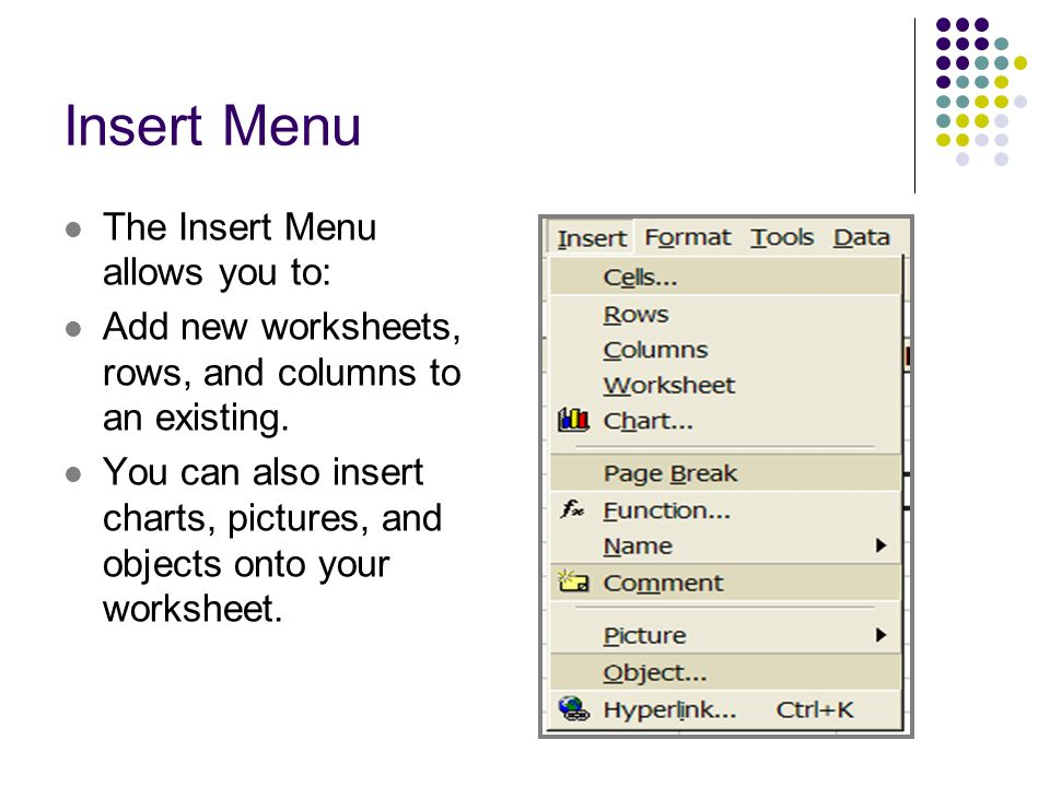 Insert Menu The Insert Menu allows you to: