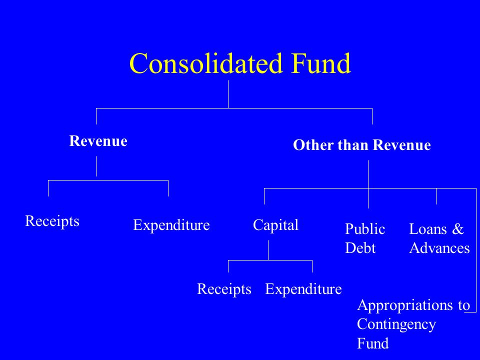 Consolidated Fund Revenue Other than Revenue Receipts Expenditure
