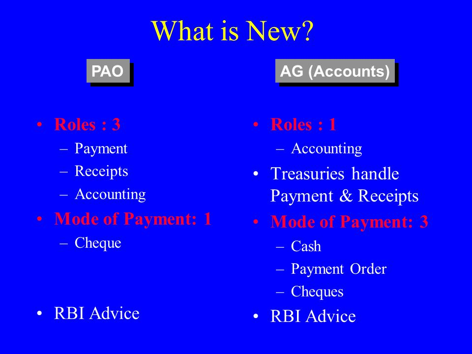 What is New Roles : 3 Mode of Payment: 1 RBI Advice Roles : 1