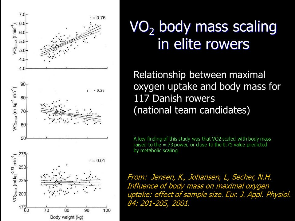 VO2 body mass scaling in elite rowers