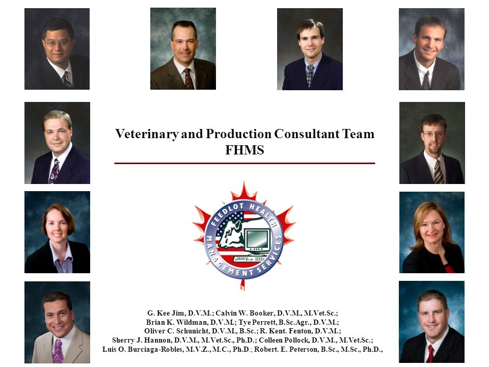 veterinary and production consultant team fhms - Production Consultant