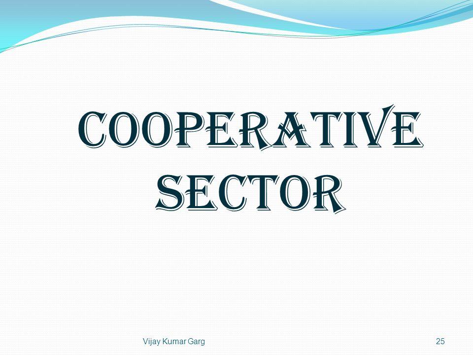 COOPERATIVE SECTOR Vijay Kumar Garg