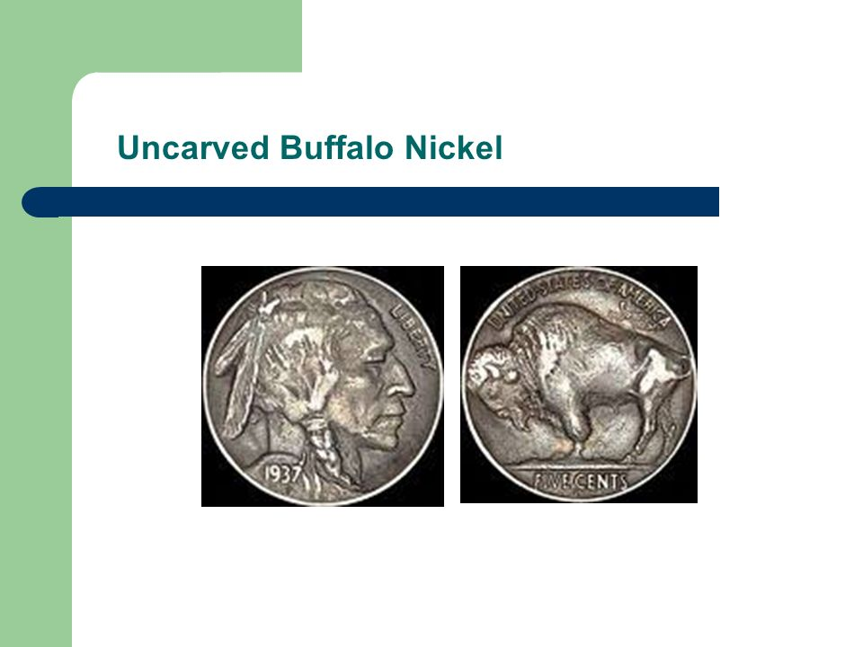 Uncarved Buffalo Nickel