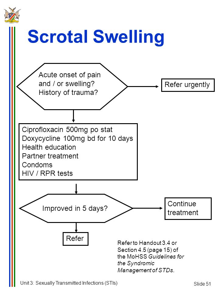 Scrotal Swelling Acute onset of pain and / or swelling