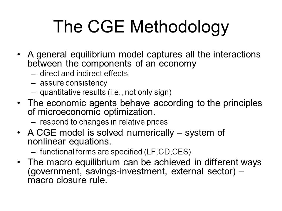 The CGE Methodology A general equilibrium model captures all the interactions between the components of an economy.