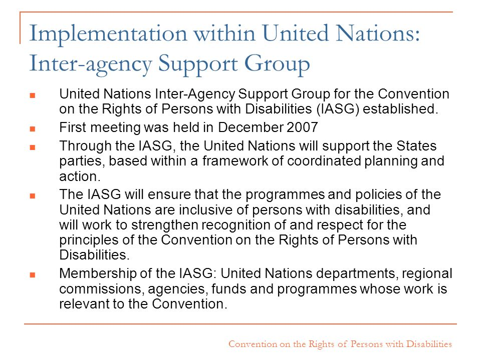 Implementation within United Nations: Inter-agency Support Group