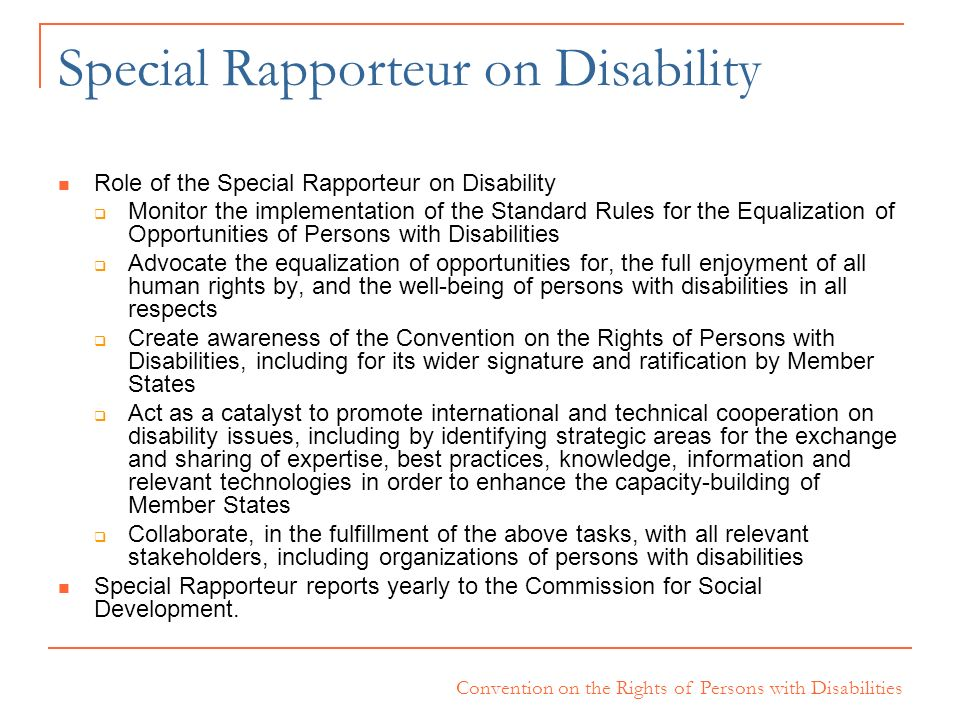 Special Rapporteur on Disability