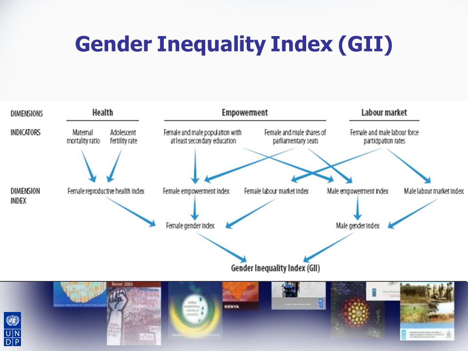 Gender Inequality Index (GII)