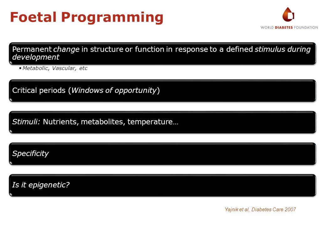 Foetal Programming Yajnik et al, Diabetes Care 2007
