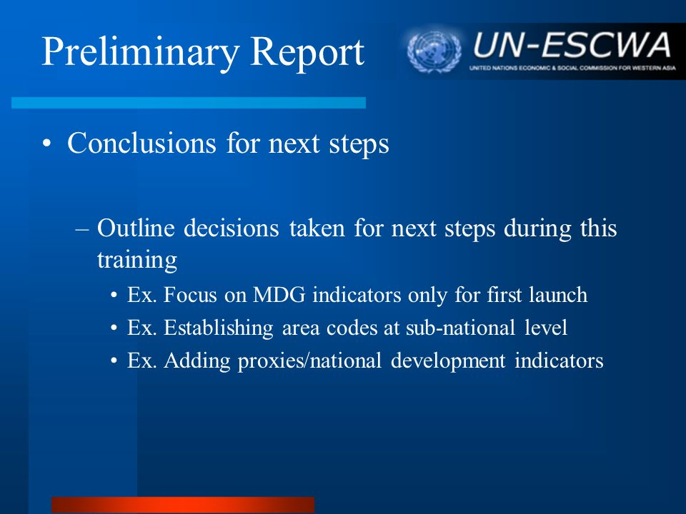 Preliminary Report Conclusions for next steps
