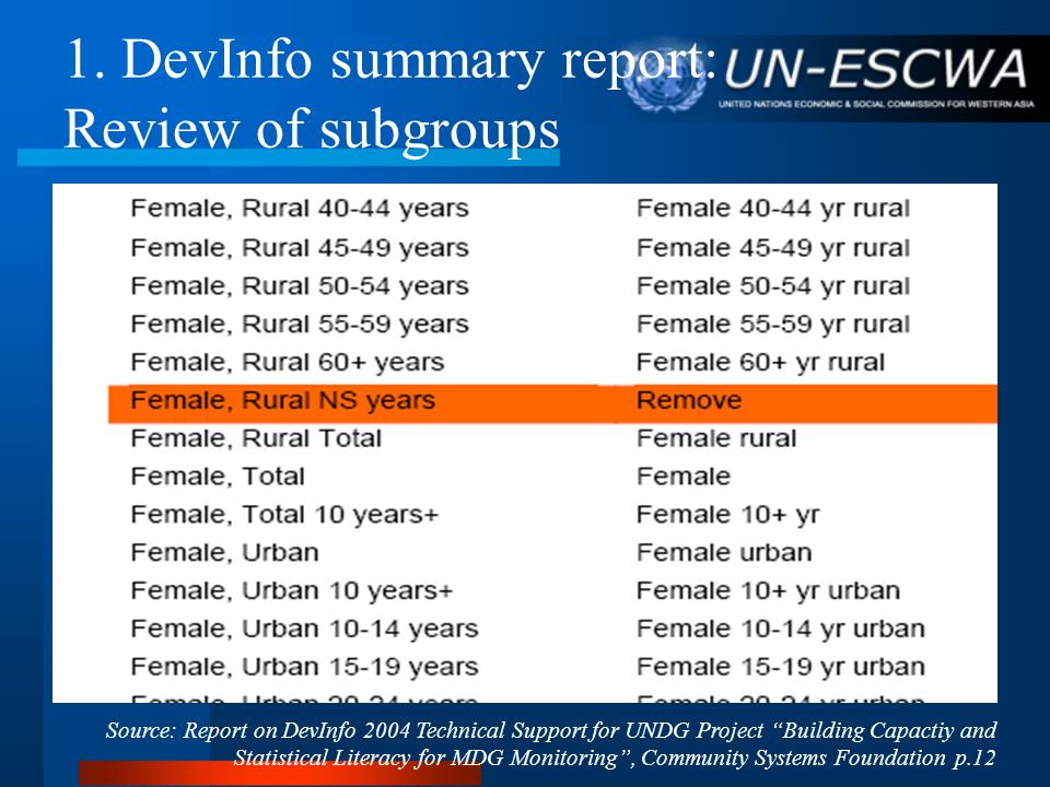 1. DevInfo summary report: Review of subgroups