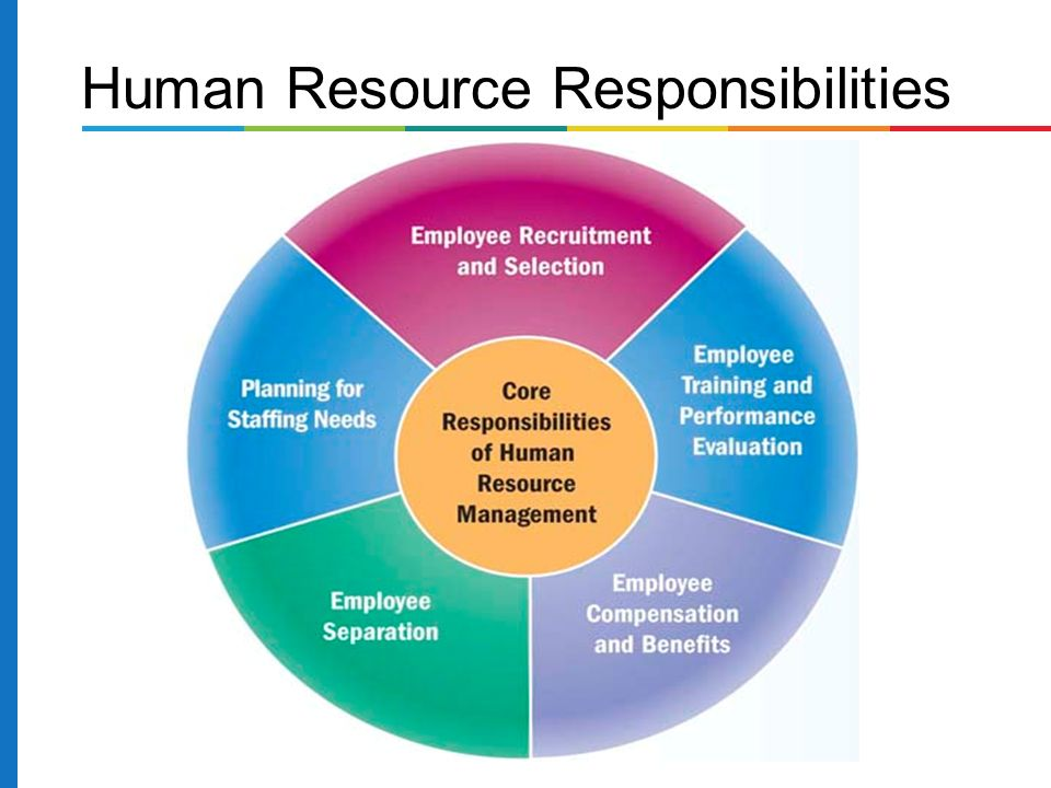 human resource responsibilities and roles essay Free essay: human resource roles and responsibilities human resource is a key to the success of a company by keeping in connection with the organization's.