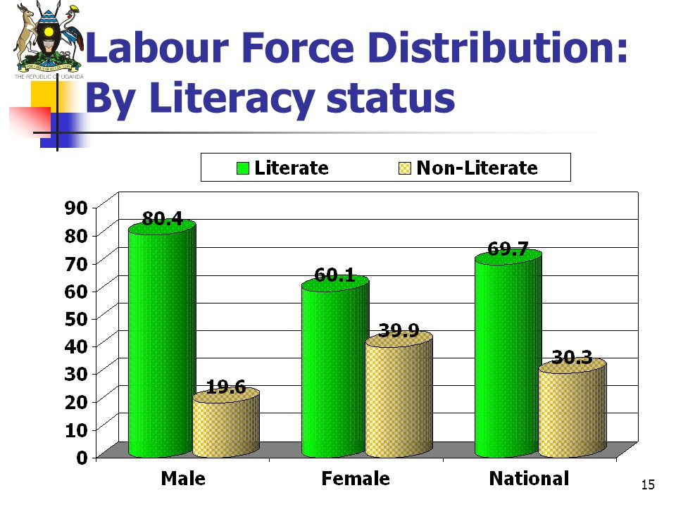 Labour Force Distribution: By Literacy status