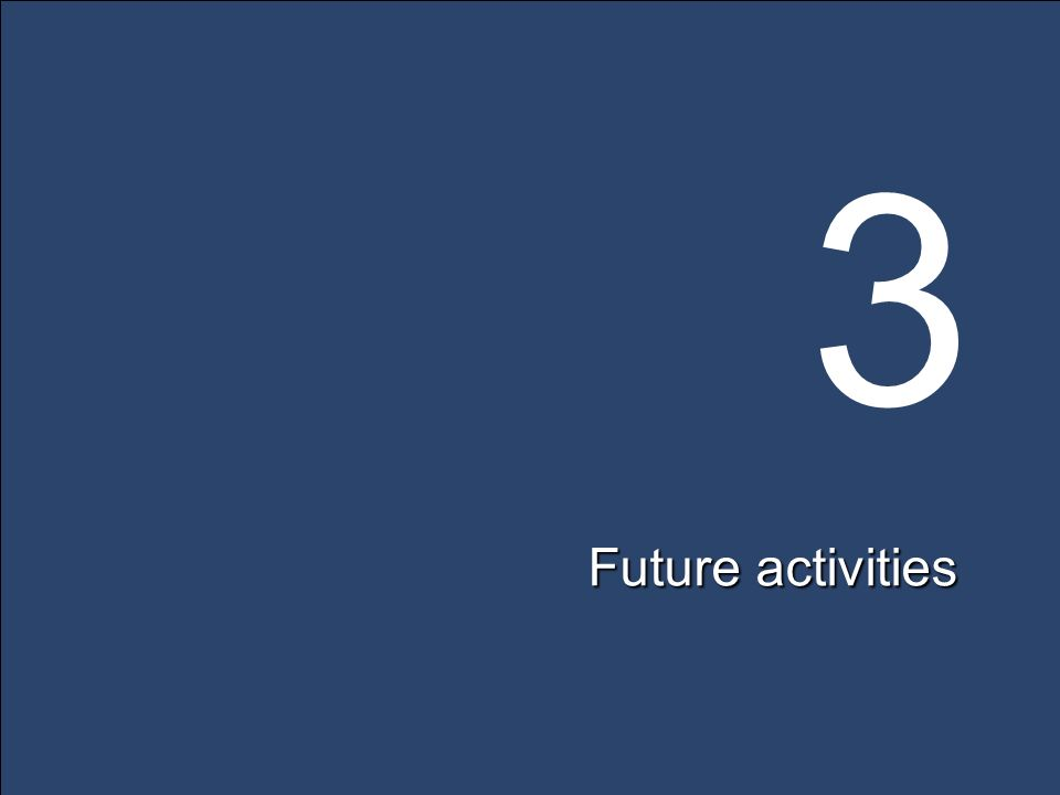 3 Future activities