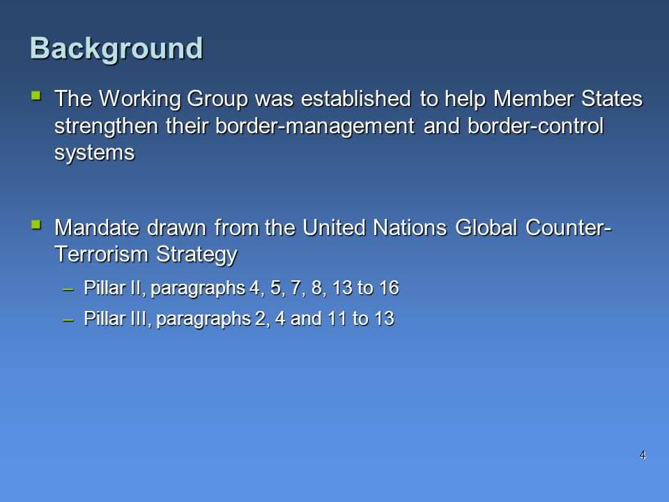 The Working Group was established to help Member States strengthen their border-management and border-control systems