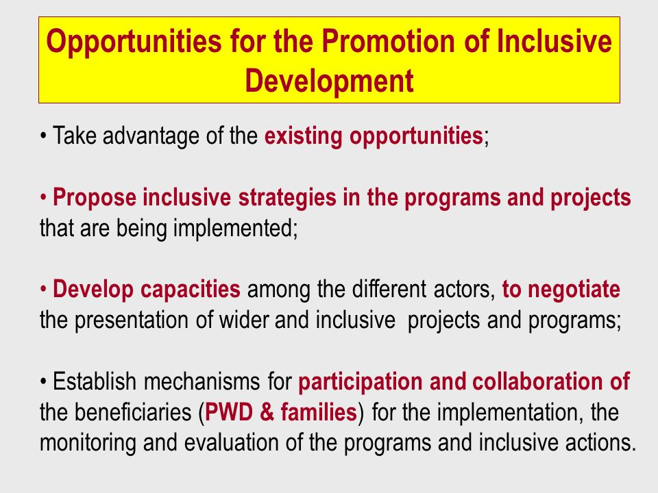 Opportunities for the Promotion of Inclusive Development