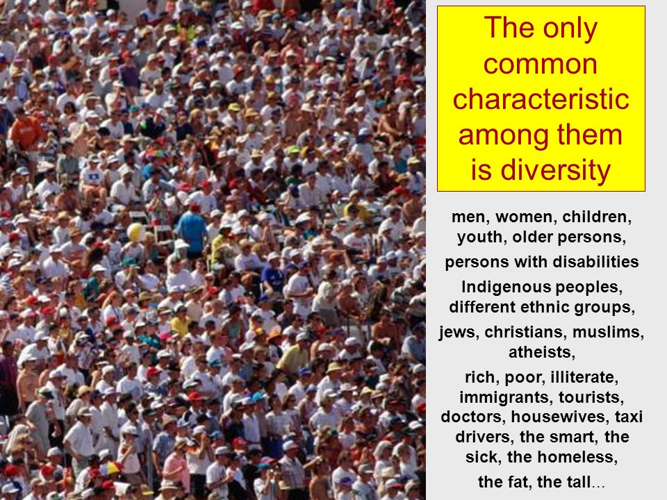 The only common characteristic among them is diversity