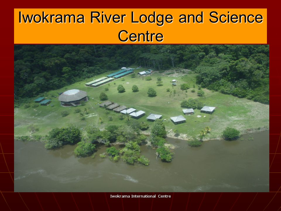 Iwokrama River Lodge and Science Centre