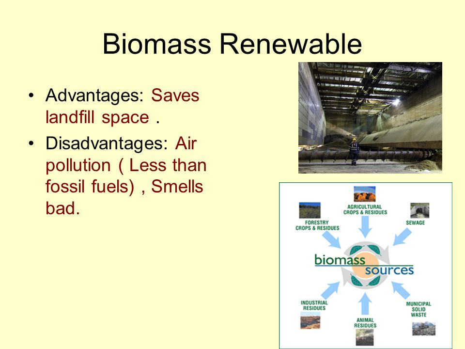Biomass Renewable Advantages: Saves landfill space .