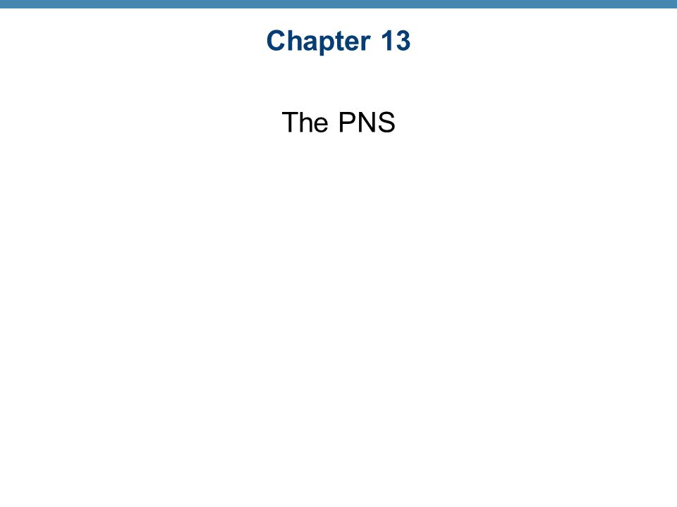 Chapter 13 The PNS. - ppt video online download