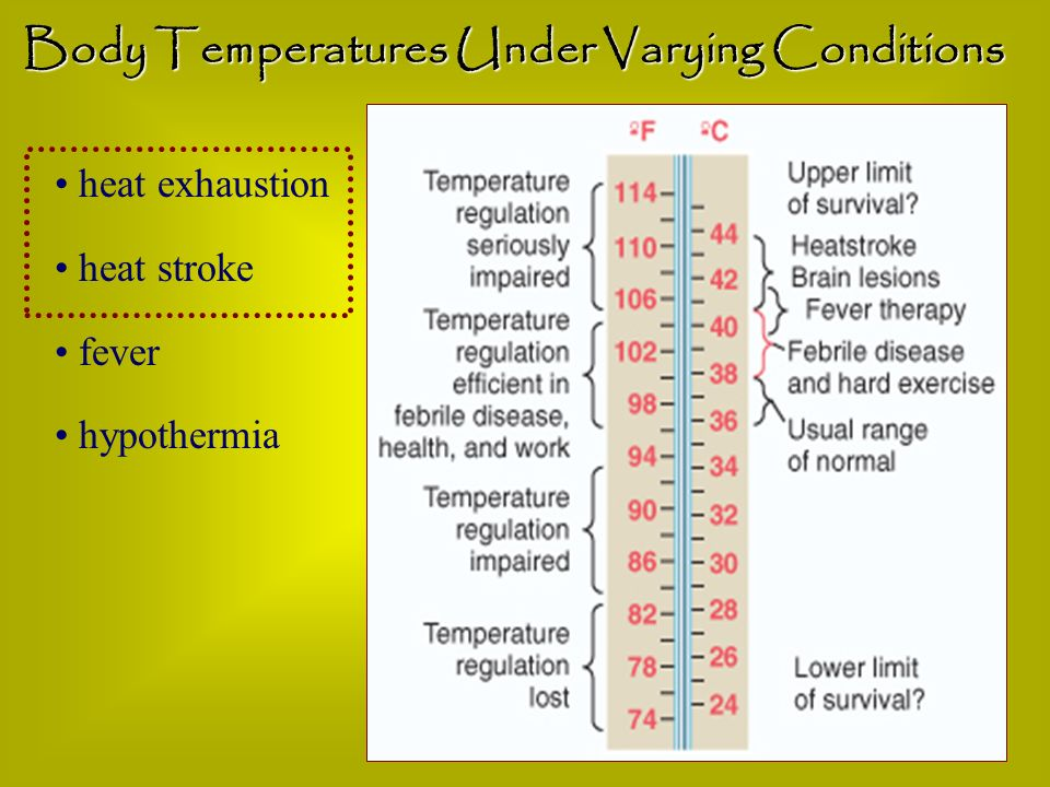 Body Temperatures Under Varying Conditions
