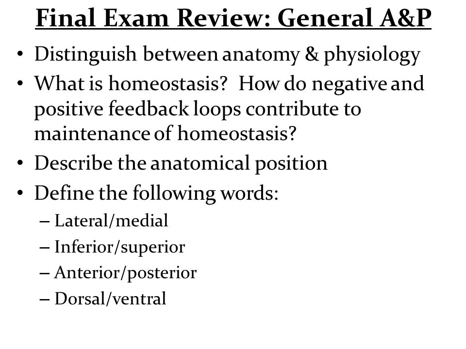 Final Exam Review: General A&P - ppt video online download