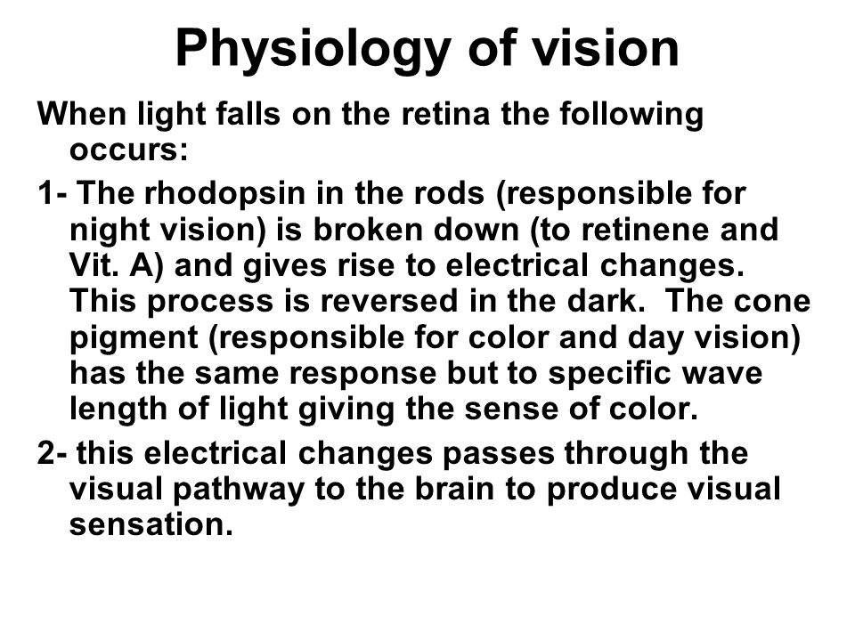 Anatomy and Physiology of The Eye - ppt video online download
