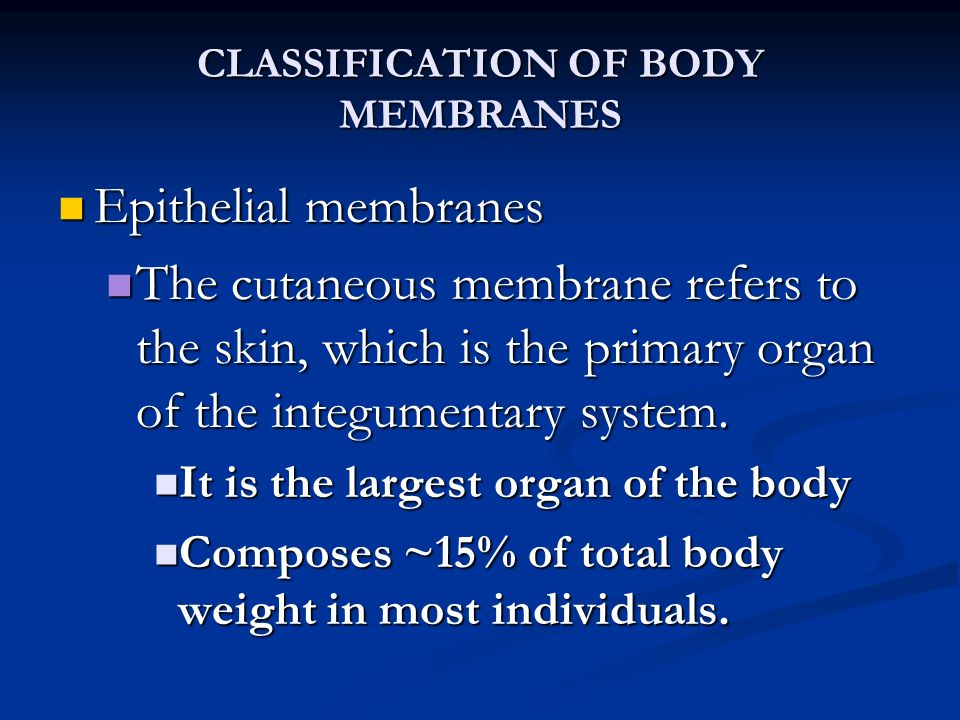 classification of body membranes Serous membrane lines only those organs, which lacks the openings to outside of our body serous membrane is composed of areolar tissue and simple squamous epithelium serous membranes usually release serous fluid in order to lubricate the surface of the membranes.