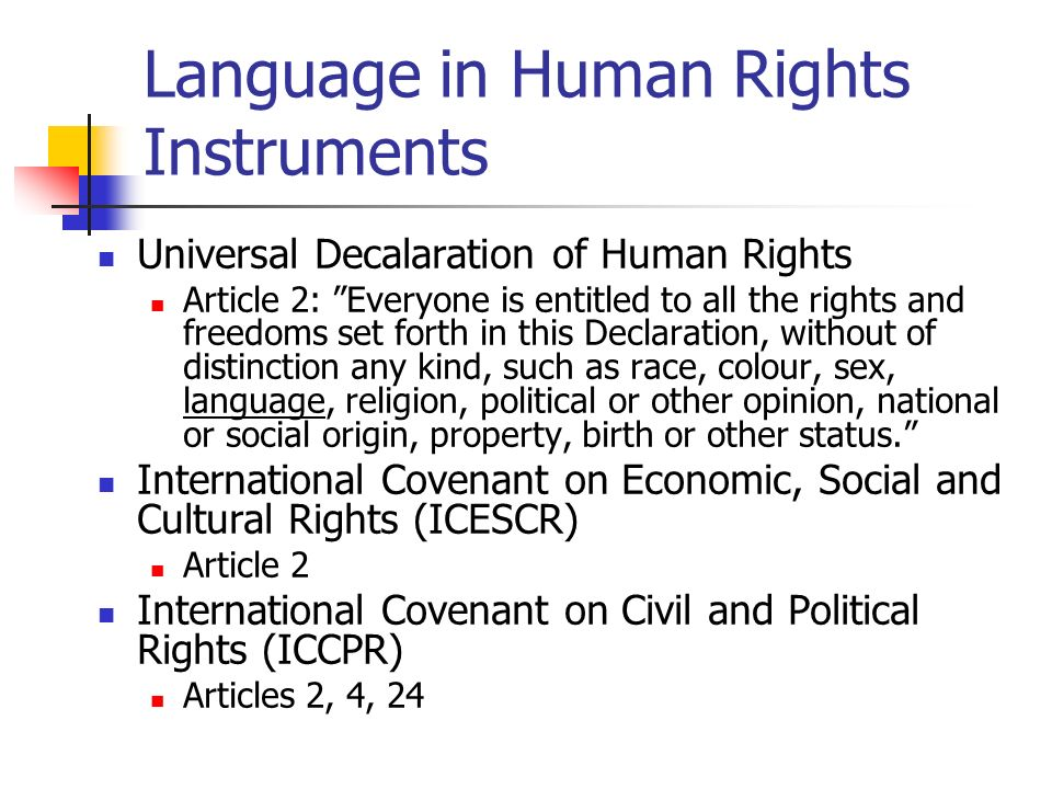 Language in Human Rights Instruments