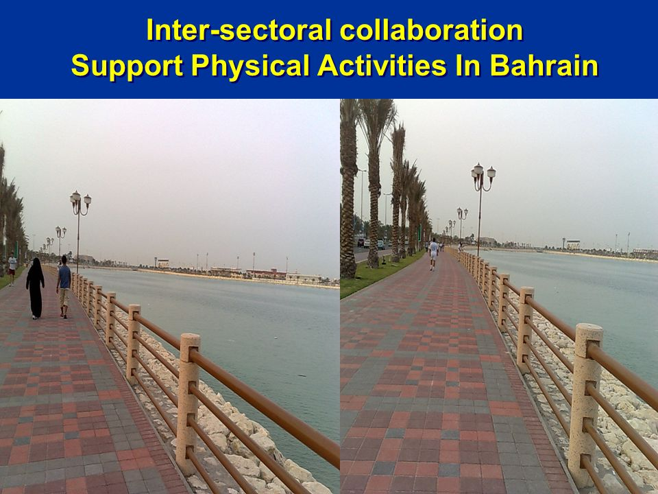 Inter-sectoral collaboration Support Physical Activities In Bahrain