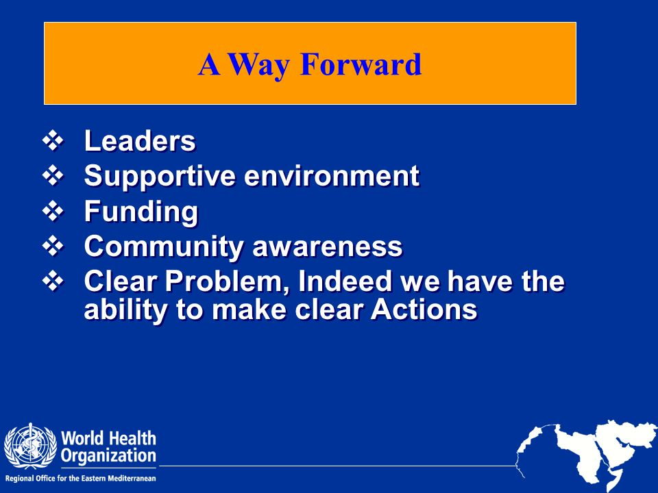 A Way Forward Key challenges Leaders Supportive environment Funding